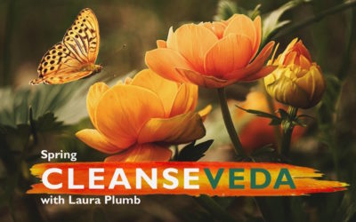 Cleanse Veda TV