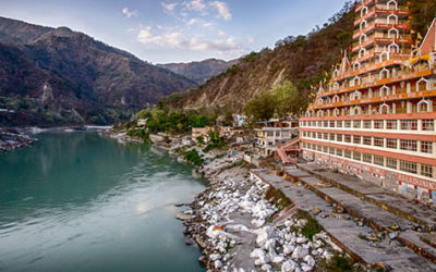 High on Ayurveda in the Himalayas